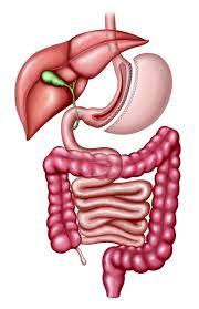 avantages sleeve gastrectomie